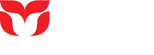 Trafico | Audiovisual